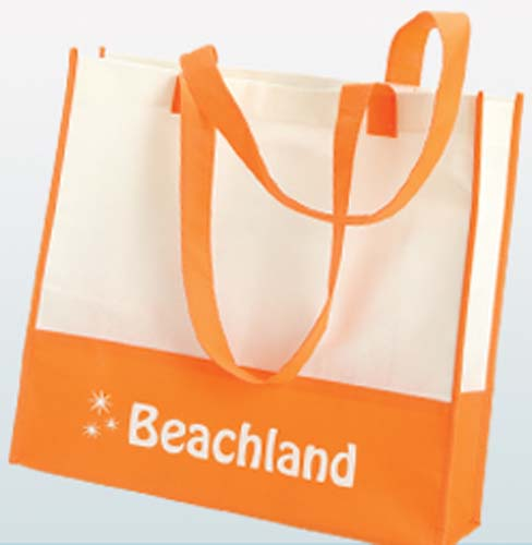 Vivi Beach Bag