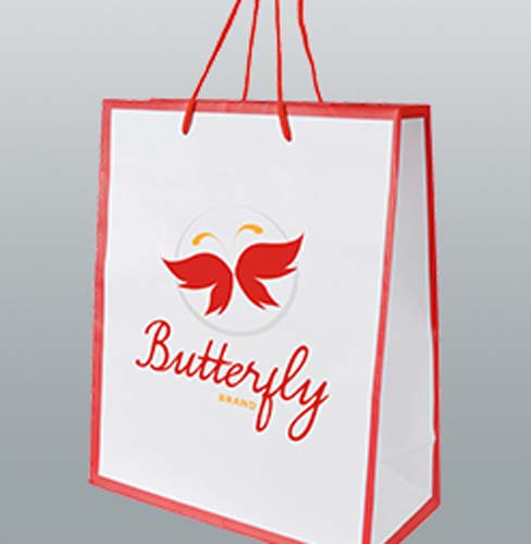 Paper Gloss Laminated gift Bag