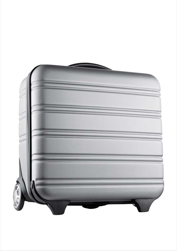 Boarding Trolley Bag
