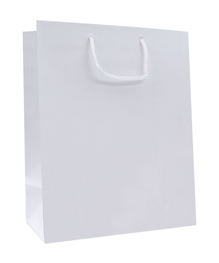 Laminated Paper Bag - Large